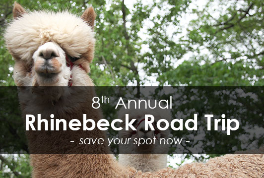 WEBS 8th Annual Rhinebeck Road Trip, October 18th