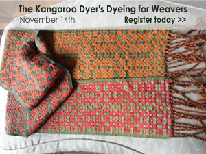 The Kangaroo Dyer's Dyeing for Weavers Class, November 14th at WEBS