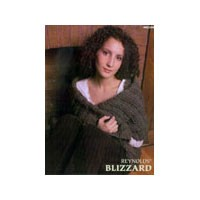 82388 Blizzard Booklet