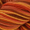 Cascade Yarns 220 Paints - 9721