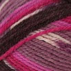 Plymouth Yarn Encore Colorspun - 8198