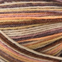 Supersocke 100 4-Ply Art Color