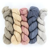 Wonderland Yarns Cheshire Cat 5-Skein Pack