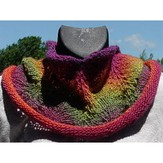 Great Adirondack 1 Skein Feather & Fan Cowl (Free)