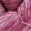 Dream in Color Kettle Dyed Smooshy - 37