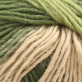 Plymouth Yarn Pasea