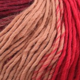 Plymouth Yarn Pasea Discontinued Colors