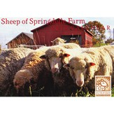 Foxfire at Springdelle Farm 2013 Sheep Calendar