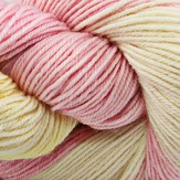 Lorna's Laces Shepherd Sock Color Commentary Clara's Garden