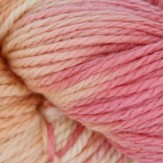 Lorna's Laces Shepherd Worsted