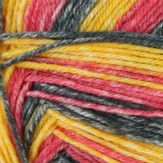 Schoeller & Stahl Yarns Fortissima Colori