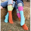 Spud & Chloë by Blue Sky Fibers 9806 Two-For-One Socks - 9806pdf