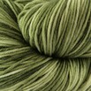 Plymouth Yarn Select Worsted Merino Superwash Kettle Dyed - 1004